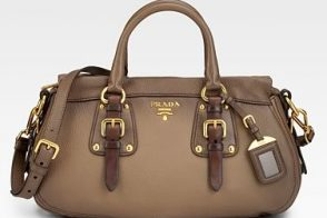The Prada Cervo Satchel is simply gorgeous