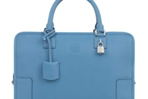 The Loewe Amazona has totally grown on me