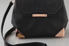I see no problems with this Alexander Wang minibag