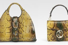 Go maxi or mini with Gucci python