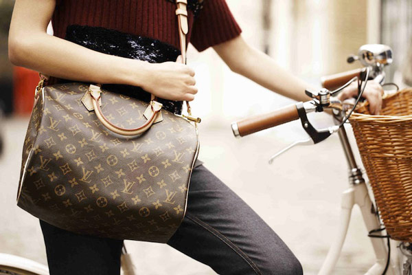 Image Result For Louis Vuitton Monogram Canvas Speedy Bandouliere  Bag