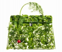 Hermes Kelly Picnic Bag (4)