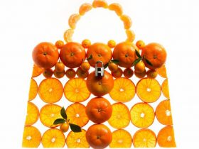 Hermes Kelly Picnic Bag (2)