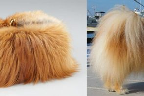 This Louboutin clutch looks a little too much like a Pomeranian