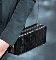 Theyskens' Theory Spring 2012 Handbags (7)
