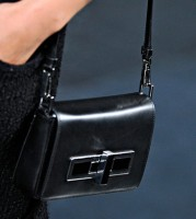 Theyskens' Theory Spring 2012 Handbags (15)