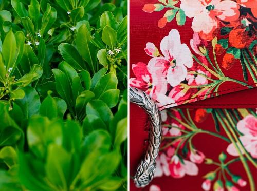 Gucci Dionysus Blooms Print Bags