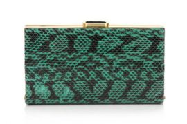 My fave runway clutch of Fall 2011 is finally available!
