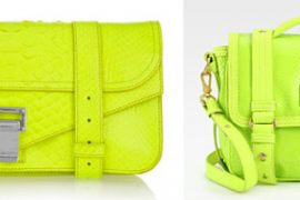 The Look for Less: Neon Python