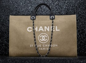 Chanel Spring 2012 Pre-Collection Handbags (7)
