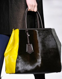 Fendi Fall 2012 Handbags (1)