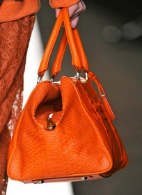 Mulberry Fall 2012 Handbags (35)