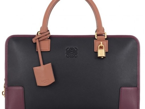 Loewe Amazona Bag in Black Chestnut