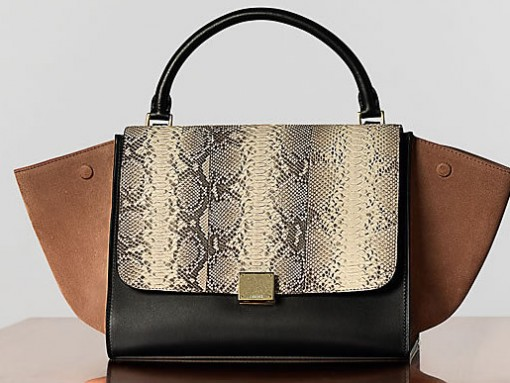All hail the Celine Trapeze Bag