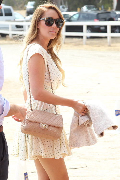 The Many Bags of Lauren Conrad (1)