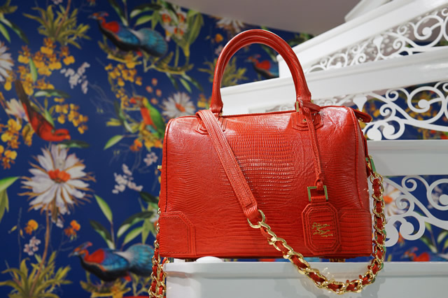 Alice and Olivia Spring 2013 Bags 6