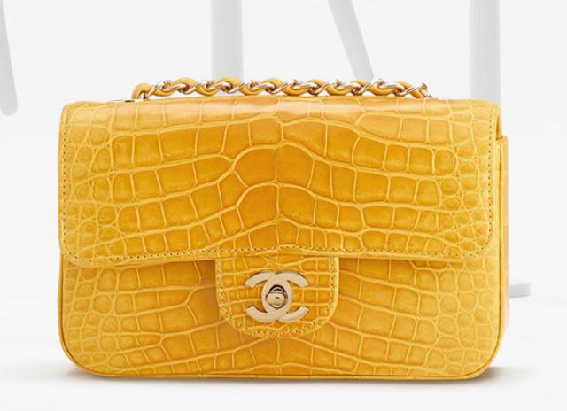 Chanel Spring 2013 Handbags (12)