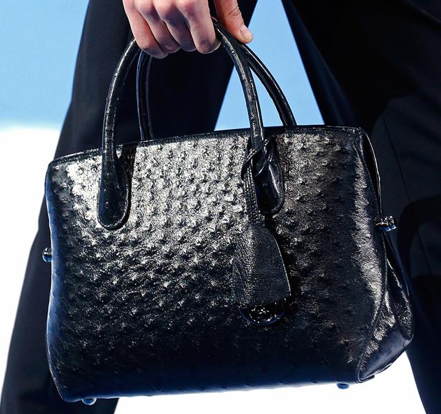 Christian Dior Fall 2013 Handbags (14)