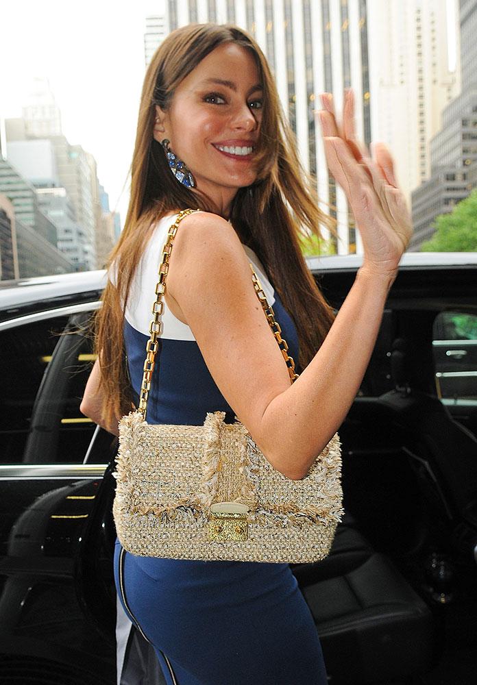 Sofia-Vergara-Christian-Dior-Miss-Dior-Woven-Flap-Bag