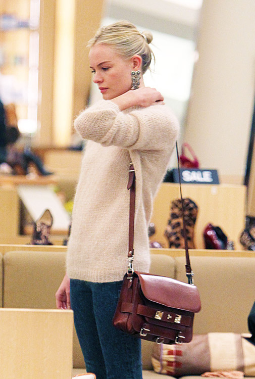 The Many Bags of Kate Bosworth (11)