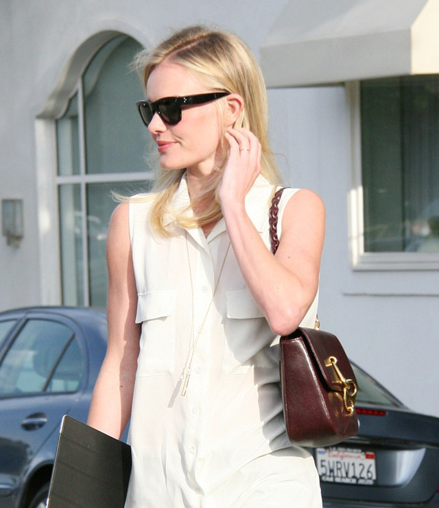 The Many Bags of Kate Bosworth (16)