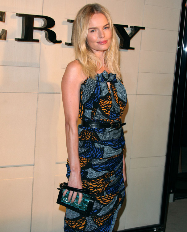 The Many Bags of Kate Bosworth (17)