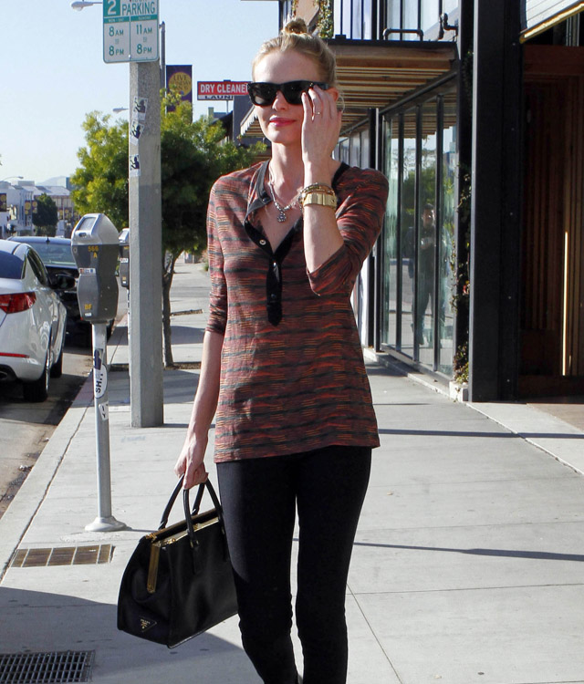 The Many Bags of Kate Bosworth (19)