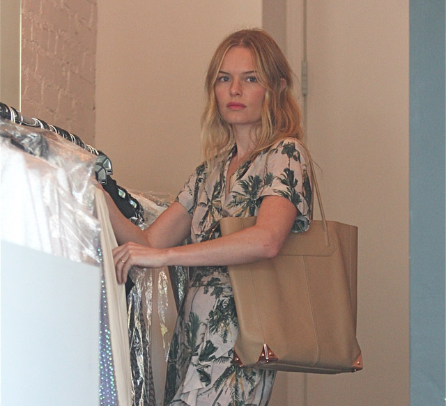 The Many Bags of Kate Bosworth (23)