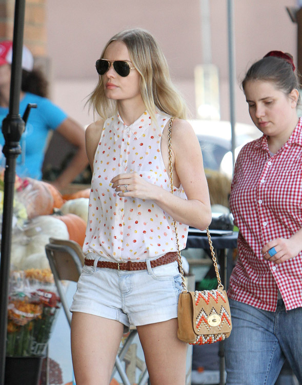 The Many Bags of Kate Bosworth (4)