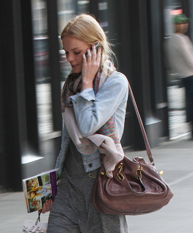 The Many Bags of Kate Bosworth (7)
