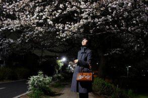 Dior Samurai Bag and Cherry Blossoms Wide