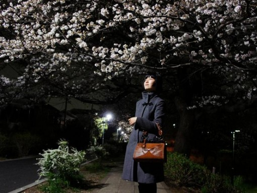 Dior Samurai Bag and Cherry Blossoms Wide