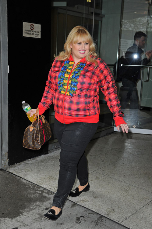 Rebel Wilson carries a Louis Vuitton Mon Monogram Speedy Bag in NYC (3)