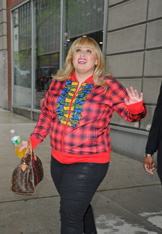 Rebel Wilson carries a Louis Vuitton Mon Monogram Speedy Bag in NYC (4)