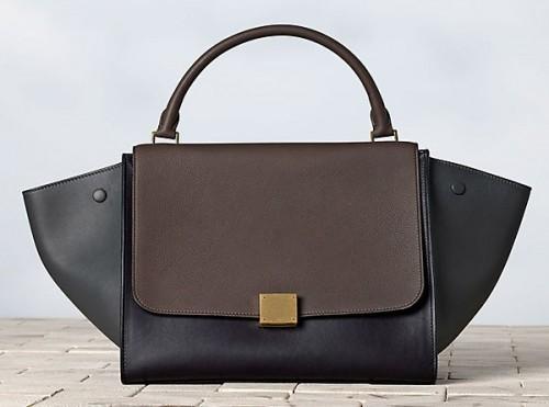 Celine Winter 2013 Handbags (15)