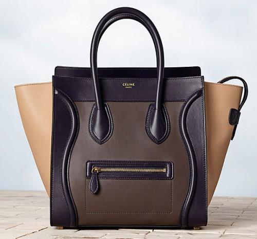 Celine Winter 2013 Handbags (25)
