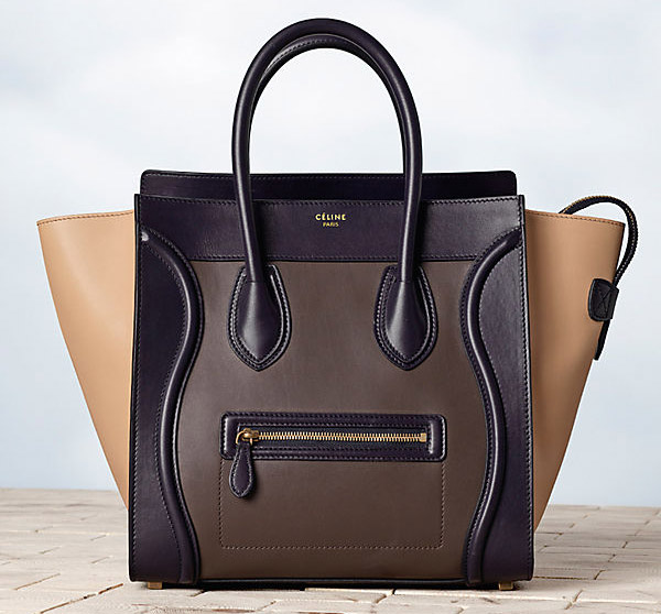 Celine Winter 2013 Handbags (25)