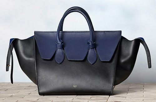 Celine Winter 2013 Handbags (27)