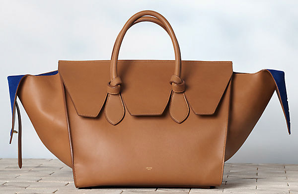 Celine Winter 2013 Handbags (28)