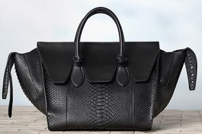 The Bags of Celine Winter 2013