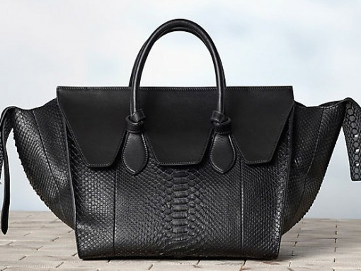 Celine Winter 2013 Handbags (29)