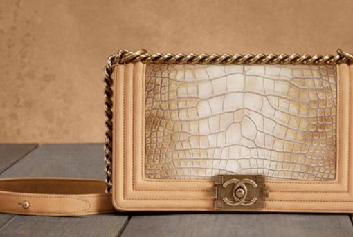Chanel Metiers d'Art 2013 Handbags (1)