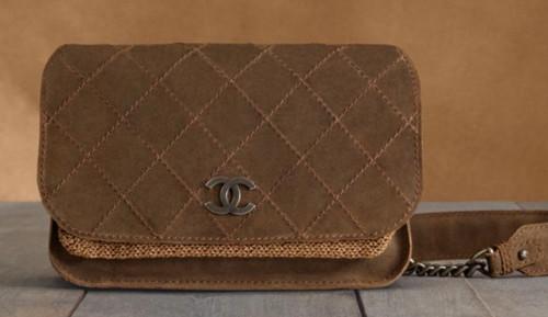 Chanel Metiers d'Art 2013 Handbags (12)