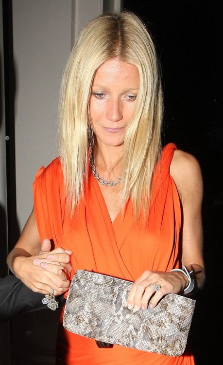 The Many Bags of Gwyneth Paltrow (9)
