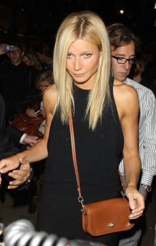 The Many Bags of Gwyneth Paltrow (12)