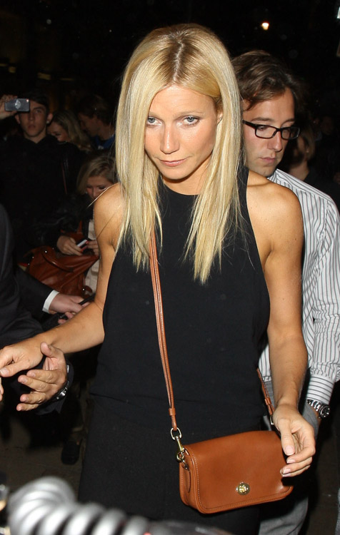 The Many Bags of Gwyneth Paltrow (12)