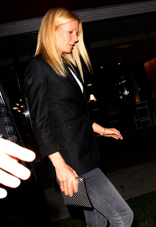 The Many Bags of Gwyneth Paltrow (14)