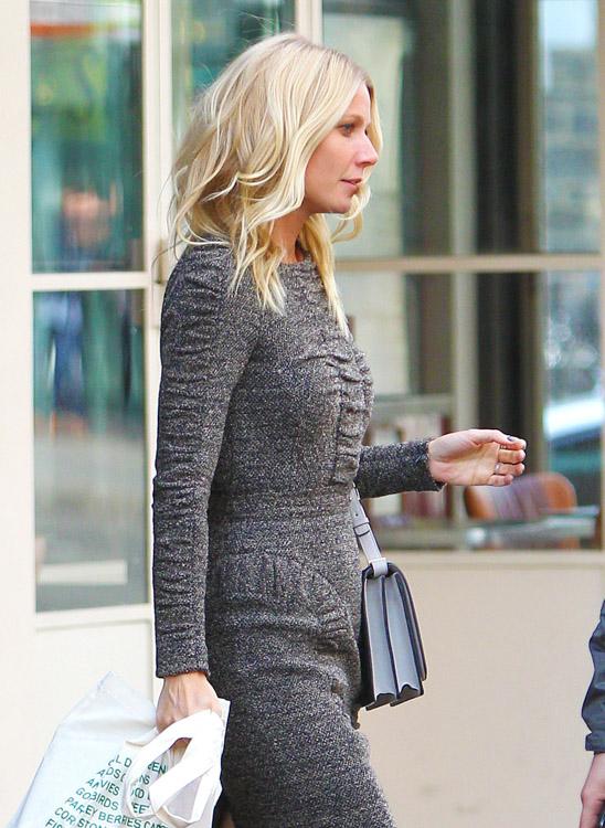 The Many Bags of Gwyneth Paltrow (13)