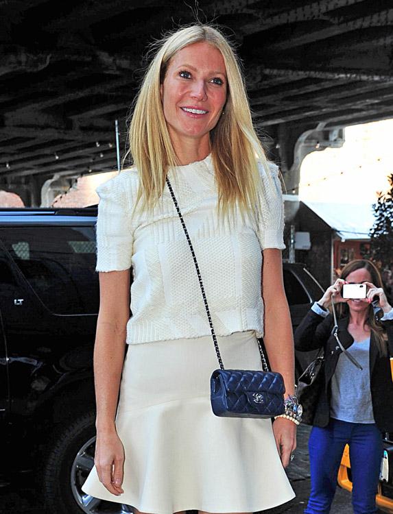 The Many Bags of Gwyneth Paltrow (16)
