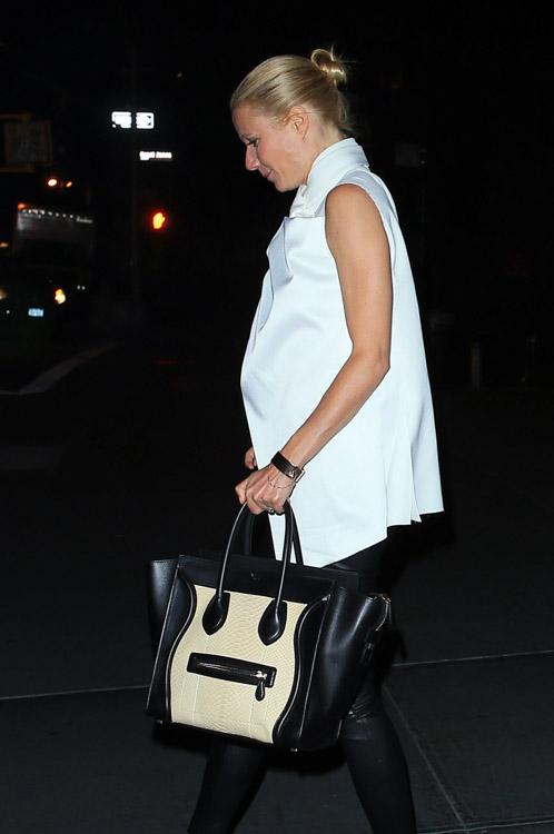 The Many Bags of Gwyneth Paltrow (21)
